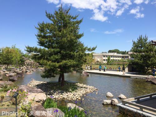 帰真園の池