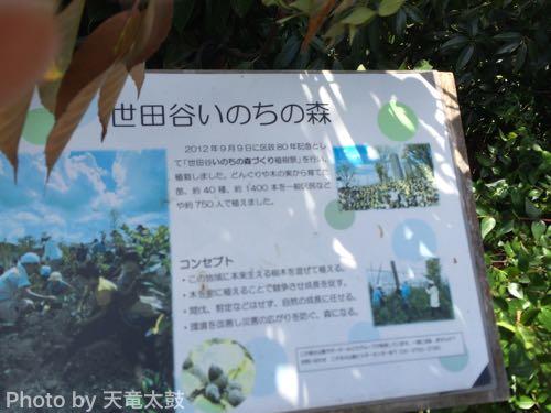 世田谷いのちの森の看板